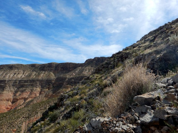 Looking to the left on the climb up, Virgin River Canyon Recreation Area, Arizona