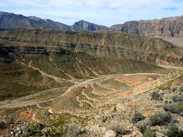 View into the canyon on the backside, Virgin River Canyon Recreation Area, Arizona