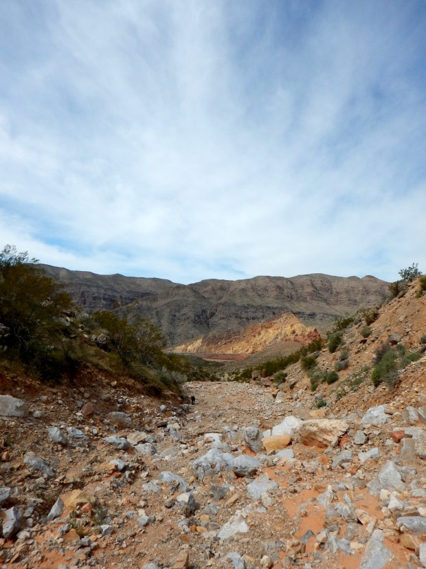 The return wash, Virgin River Canyon Recreation Area, Arizona