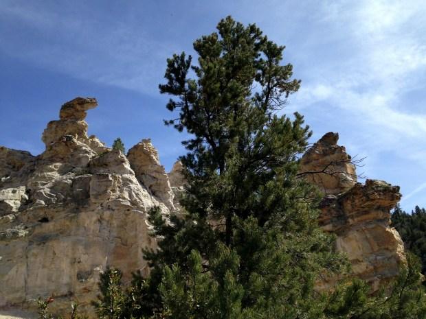Crumbling white sandstone, Dixie National Forest, Utah
