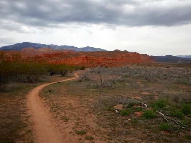 Prospector Trail, Red Cliffs National Conservation Area, Utah