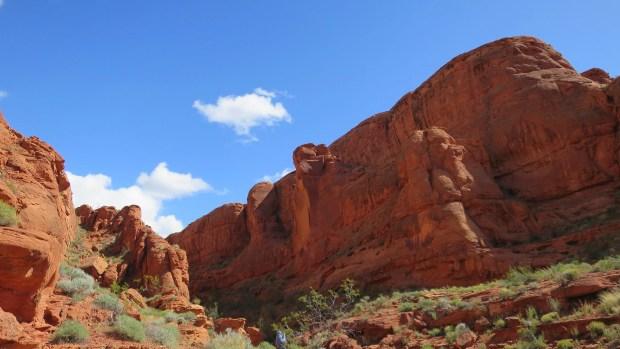 At base of Dino Cliffs, Red Cliffs Desert Reserve, Utah