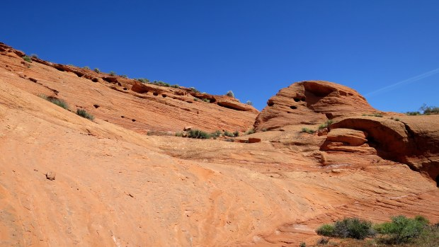 Sandstone amphitheater, Red Cliffs Desert Reserve, Utah