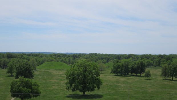 """Looking at the """"Twin Mounds"""" from atop Monks Mound, Cahokia Mounds State Historic Site, Illinois"""