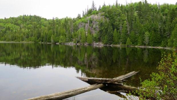 Along the shore, Orphan Lake Trail, Lake Superior Provincial Park, Ontario, Canada