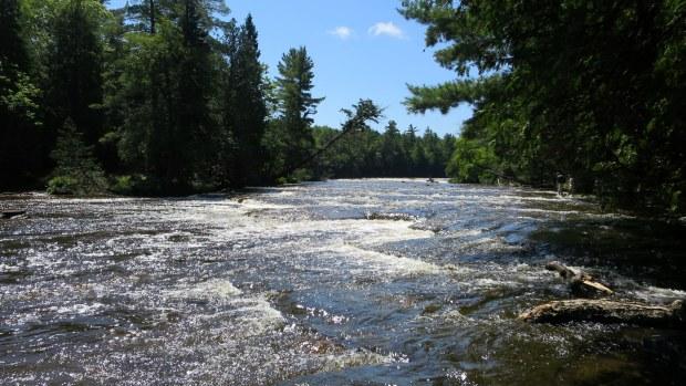 Sun reflecting off water, River Trail, Tahquamenon Falls State Park, Michigan