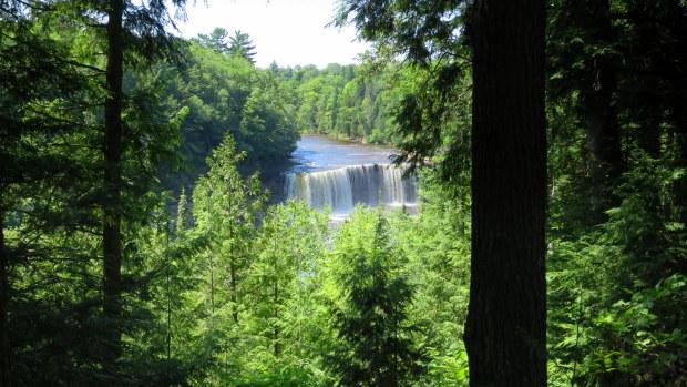 Overlooking Upper Falls, Tahquamenon Falls State Park, Michigan