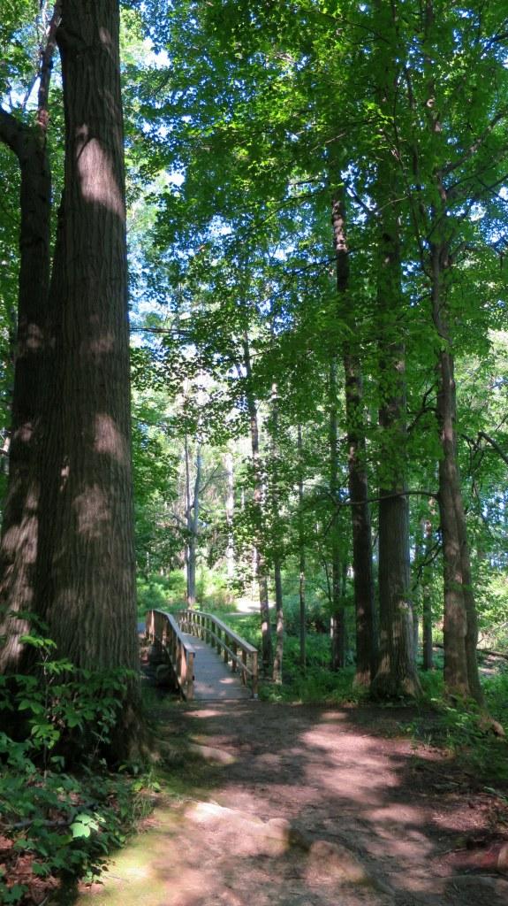 Bluff Trail, Chimney Bluffs State Park, New York