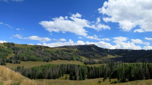 Fishlake National Forest, Utah