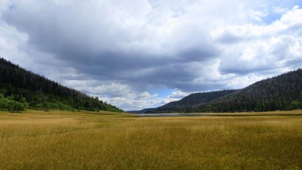 Crossing through grasses, Navajo Lake Loop Trail, Dixie National Forest, Utah