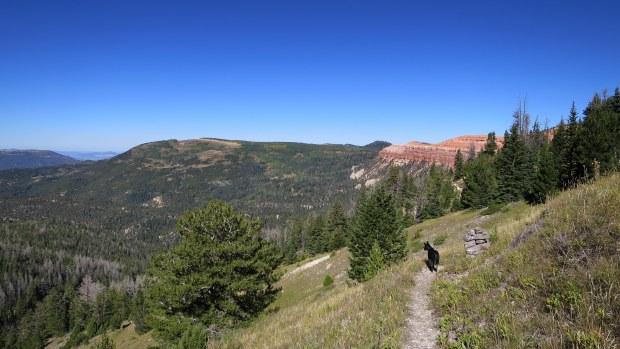 Abby on the Rattlesnake Trail, Ashdown Gorge Wilderness, Dixie National Forest, Utah