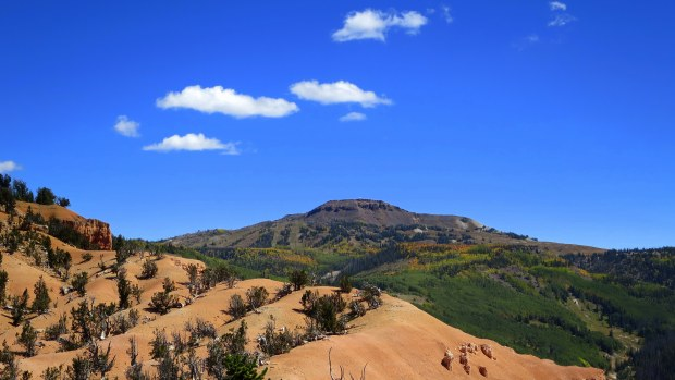 Brian Head Peak from Twisted Forest, Ashdown Gorge Wilderness, Dixie National Forest, Utah