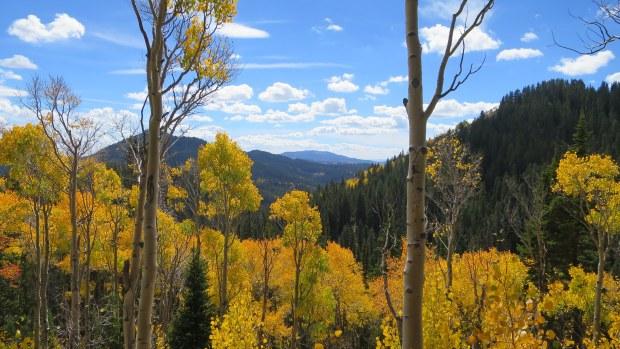 Skyline Trail, Fishlake National Forest, Utah