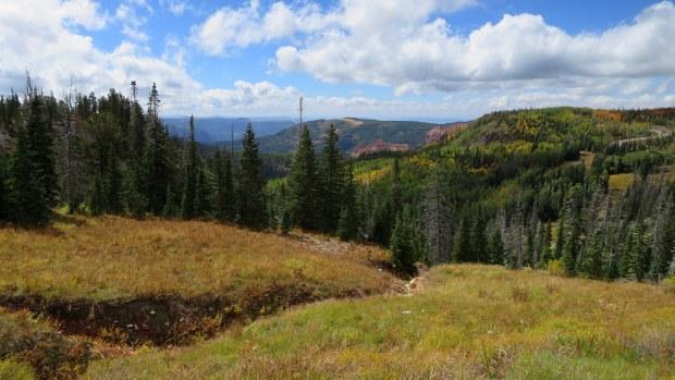 Near Brian Head Peak, Utah