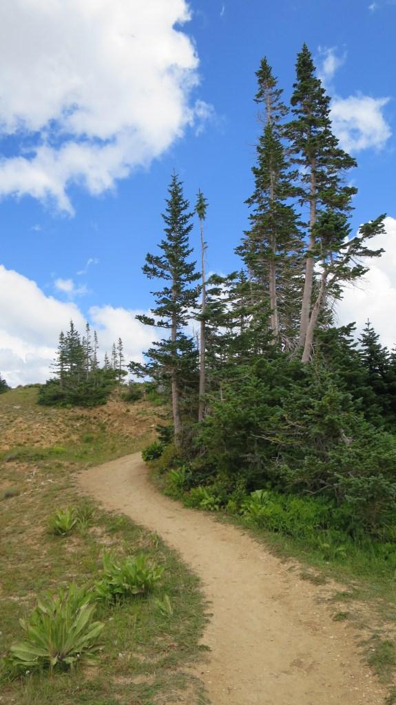 Ramparts Trail, Cedar Breaks National Monument, Utah