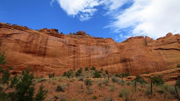 The Upper Gulch, Burr Trail, Grand Staircase-Escalante National Monument, Utah