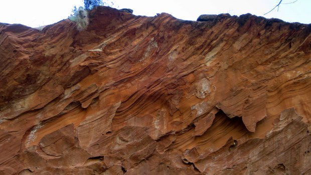 Erosion patterns on the canyon wall in The Gulch, Burr Trail, Grand Staircase-Escalante National Monument, Utah
