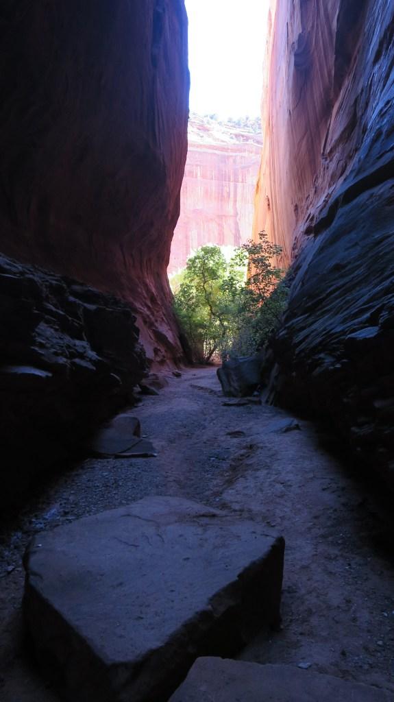 Short slot canyon on Burr Trail, Grand Staircase-Escalante National Monument, Utah