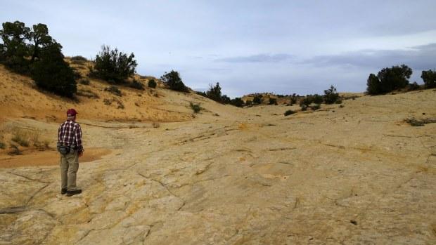 Crossing petrified dunes, Burr Trail, Grand Staircase-Escalante National Monument, Utah