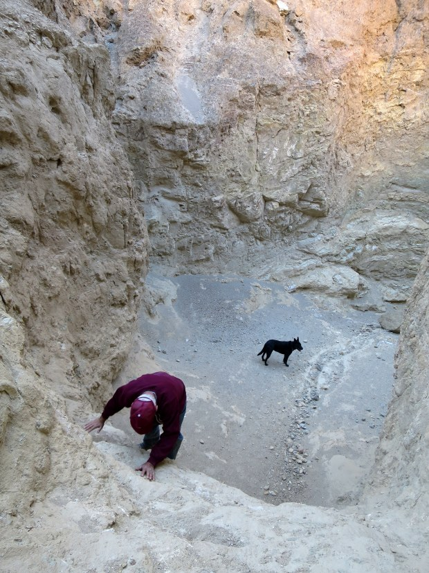 Tom climbing back down a dry falls in Desolation Canyon, Death Valley National Park, California