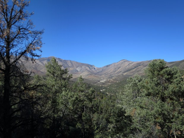 Lovell Canyon Trail, Spring Mountains National Recreation Area, Humboldt-Toynbee National Forest, Nevada