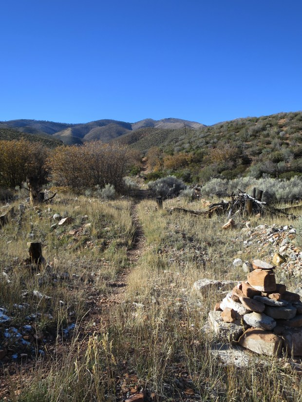 Trail, Handy Peak Loop, Spring Mountains National Recreation Area, Humboldt-Toynbee National Forest, Nevada