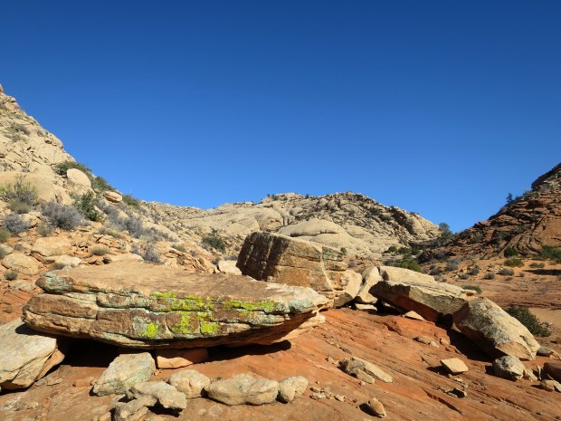 Heading off the Yellow Knolls Trail to explore a canyon, Red Cliffs Desert Reserve, Utah