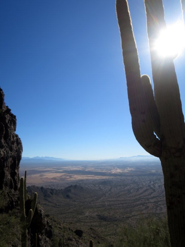 View from the bowl, Hunter Trail, Picacho Peak State Park, Arizona