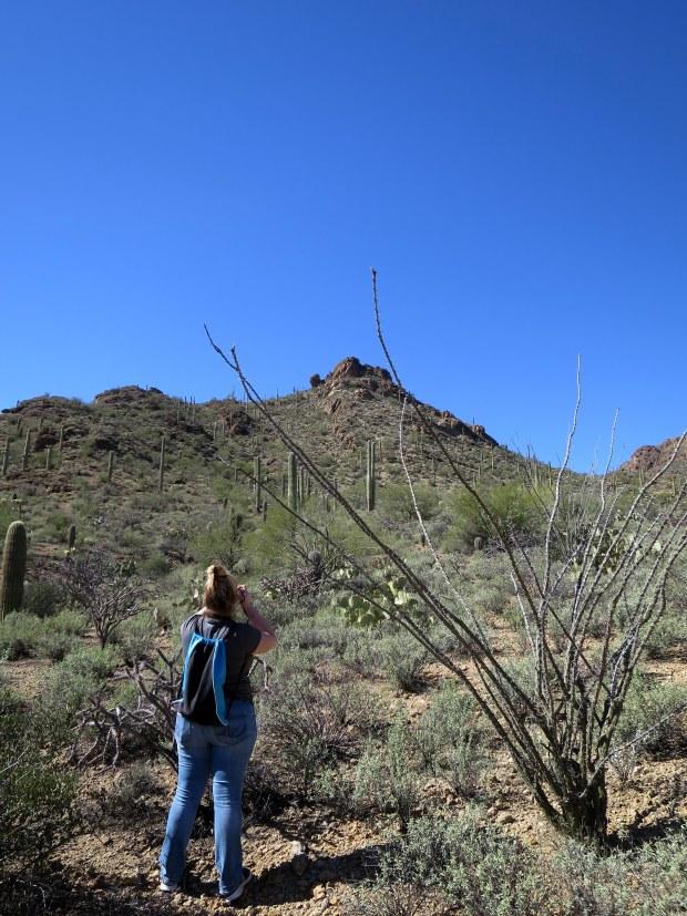 Tina taking photos, Tucson Mountain Park, Tucson, Arizona