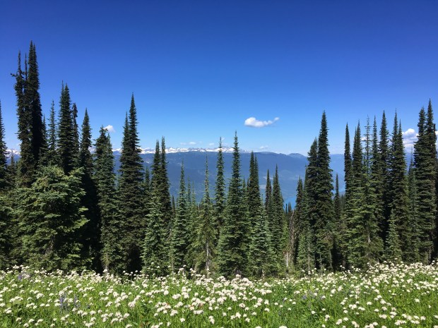Banff_Jasper_iphone 2523