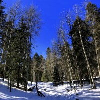 In Search of Snow: More Hiking in the Canyons of the Sacramento Mountains