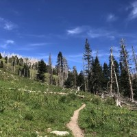 Choose Your Own Path: A Hike to Buck Mountain