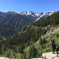 Wind Cave Trail and the Drive up Logan Canyon to Bear Lake