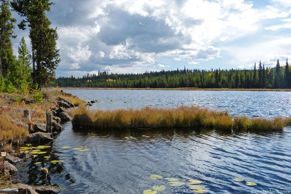 Hydraulic Lake near McCulloch Station