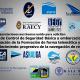 PROPUESTAS PARA LA REALIZACIÓN DE VISITAS DE CONTROL DE SEGURIDAD BÁSICA A EMBARCACIONES DE RECREO POR PARTE DE SUS ARMADORES O PERSONAS AUTORIZADAS, CONTINUACIÓN DE LA FORMACIÓN EN MATERIA DE TITULACIONES NAUTICO – RECREATIVAS, ASÍ COMO RESTABLECIMIENTO DE LA NAVEGACIÓN RECREATIVA DURANTE LA VIGENCIA DEL ESTADO DE ALARMA Y MEDIDAS RESTRICTIVAS DE LA LIBRE CIRCULACIÓN DICTADAS ANTE LA PANDEMIA GENERADA POR EL COVID 19