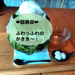 【大阪堺超人気かき氷】つぼ市ふわふわ絶品抹茶かき氷食べてきたよ♫