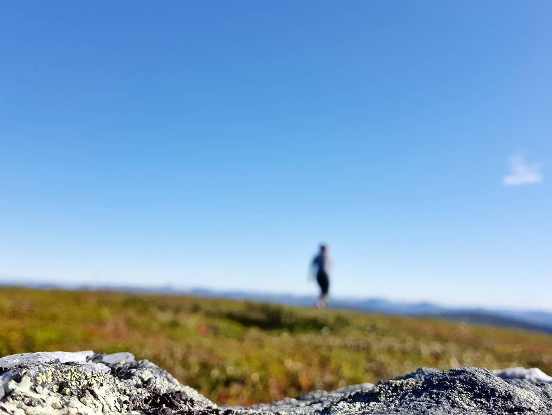 Vandring på Önrun, Sveriges vidaste vy. Foto © Britta Olofsson