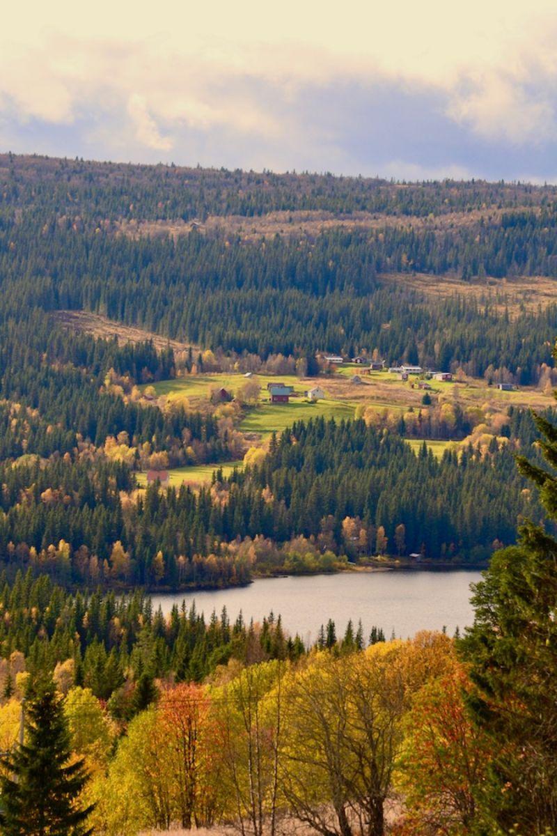 Höst, Vallrun i vy mot Dal. Foto © flyttatillfjallen.se