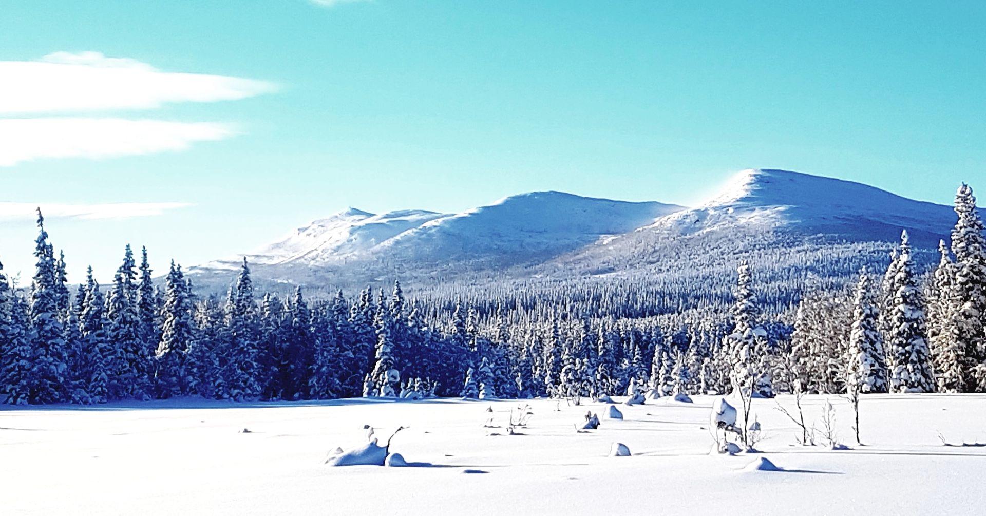 Vinter i Ansättfjällen. Foto © Jet Sleddogs.