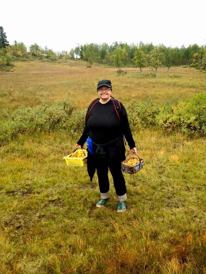 Kantarellplockning vid Fjällägenheten Bågavattnet i Hotagsbygden. Foto © Mariana Tarander.