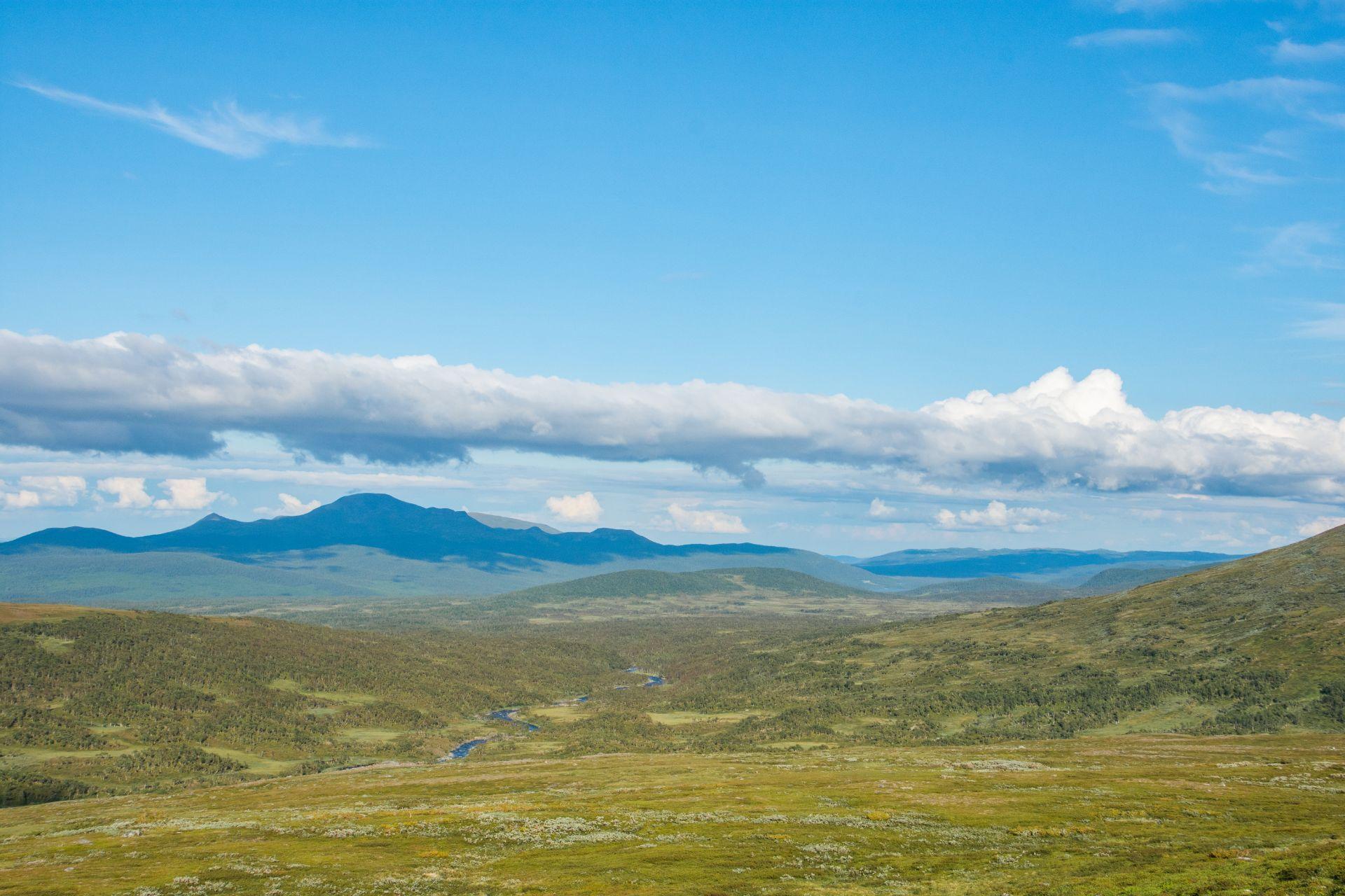 Sluttningen nedanför Sjkrihtie med vy över Munsfjället och Avansbäcken. Foto © Mikael Nyberg.
