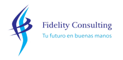 Fidelity Consulting