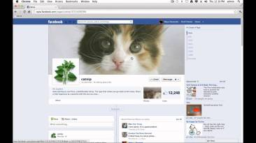 11 facebook timeline tips and tr