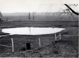 1967 Pond