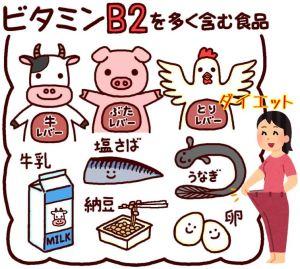 ビタミンB2の効果的な摂取方法