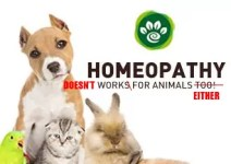 homeopathy doesnt work for animals either