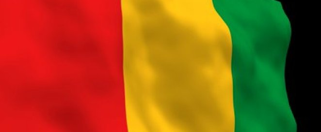 Guinea national flag - corrupt countries in Africa