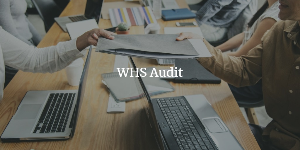 WHS-Audit