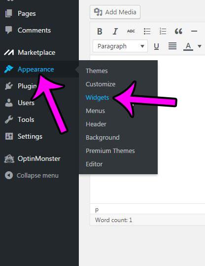 removing sidebar widgets from wordpress