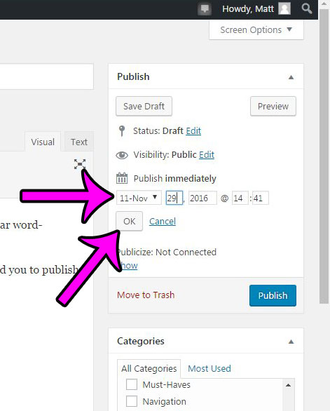 how to schedule a post for the future in wordpress 4.6